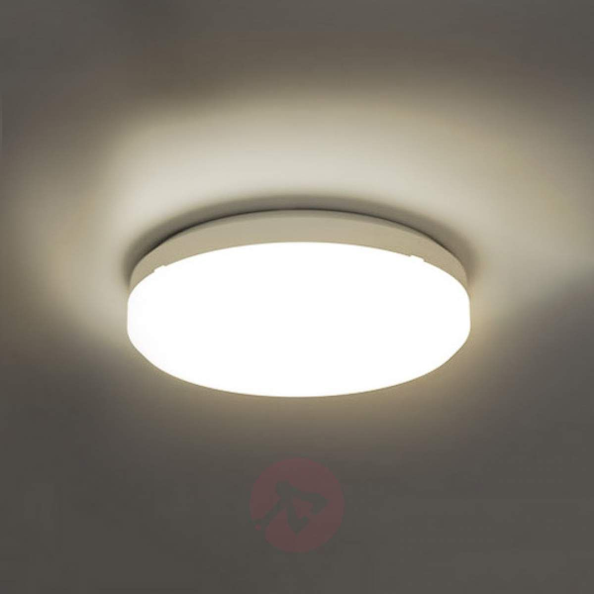 Sun 15 Lampa Sufitowa Led Ip65 26 W 3000k In 2019 Lampy