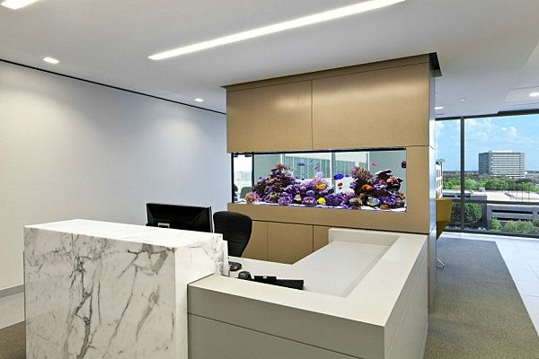 kuhle dekoration buro einrichtungsideen modern, aquarium am arbeitsplatz – beruhigende und schöne dekoration - #büro, Innenarchitektur