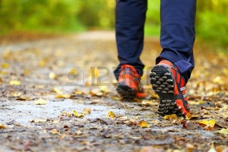 man walking cross country and trail in autumn forest
