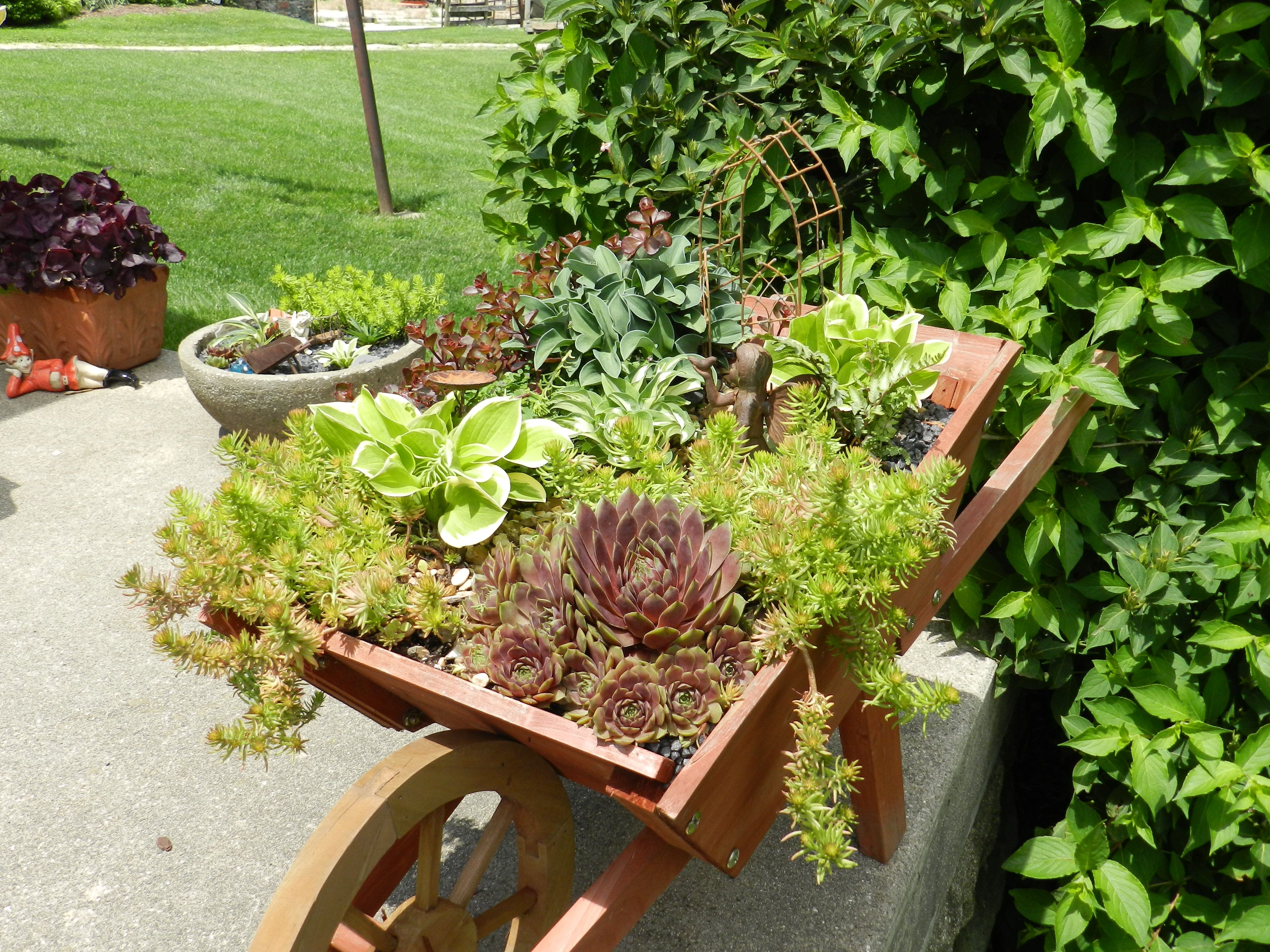 Fairy garden garden ideas pinterest for Garden designs pinterest