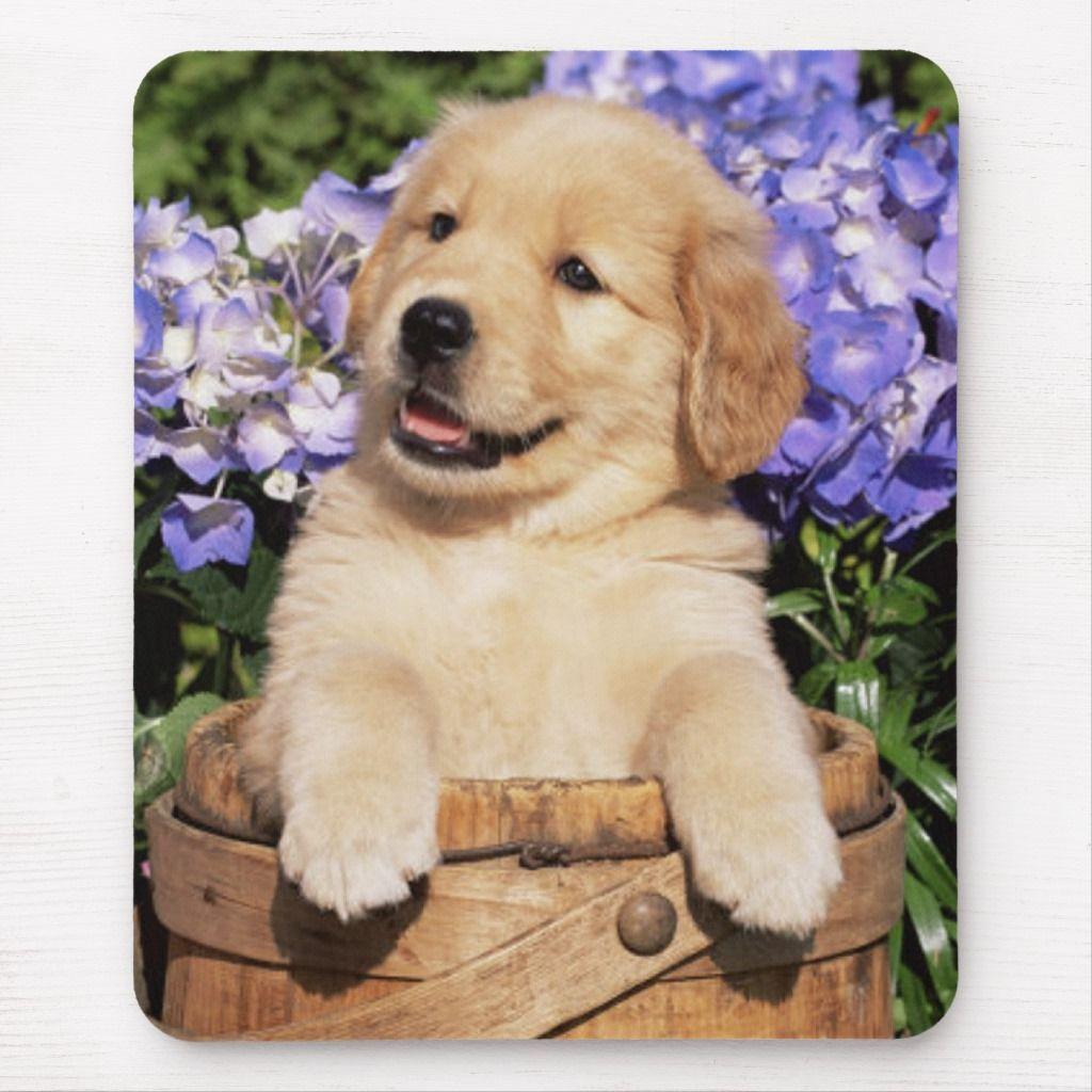 Smiling Golden Retriever Puppy Dog Mouse Pad Zazzle Com Dog