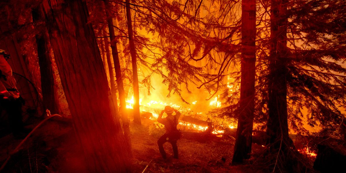 This Is What California Needs To Do About Its Fires In 2020 California Wildfires Climate Change California