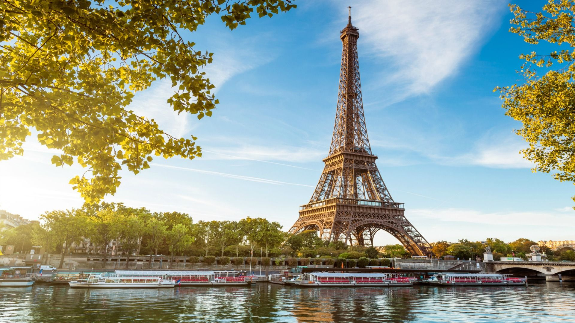 Located only one block from the Eiffel Tower and the lush gardens and playgrounds of Champ de Mars park our 2 bedroom apartment Côtes du Rhône is on the Left Bank.