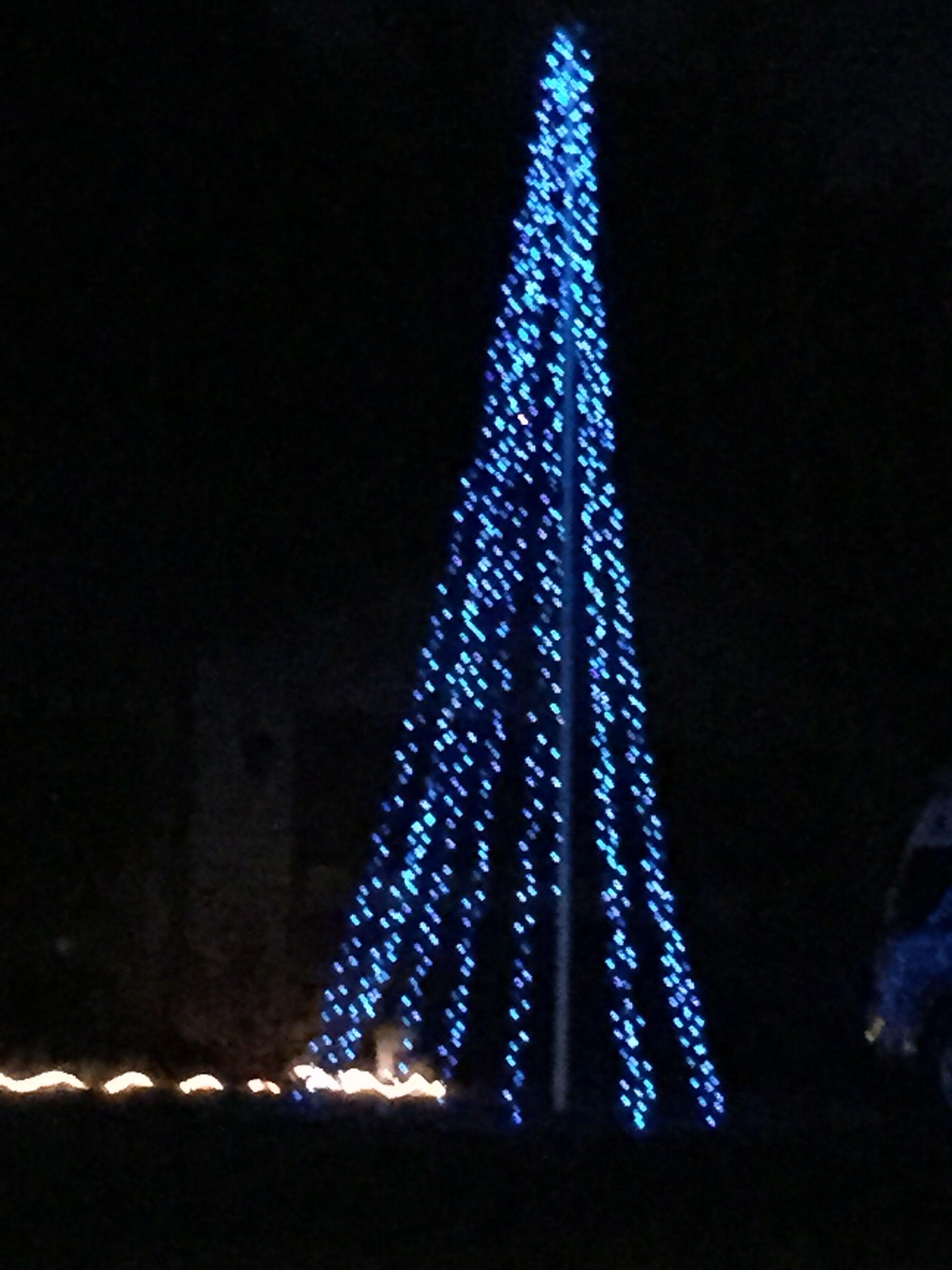 Our Flagpole Christmas Tree Lights Christmas Christmas Tree