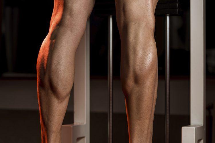 Como aumentar rapido la masa muscular de las piernas