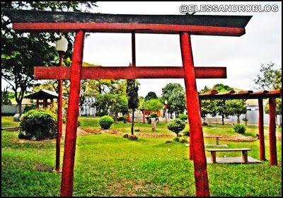 ELESSANDRO ALTERNATIVO: PAISAGENS DA CIDADE DE PARANAVAÍ - PARANÁ