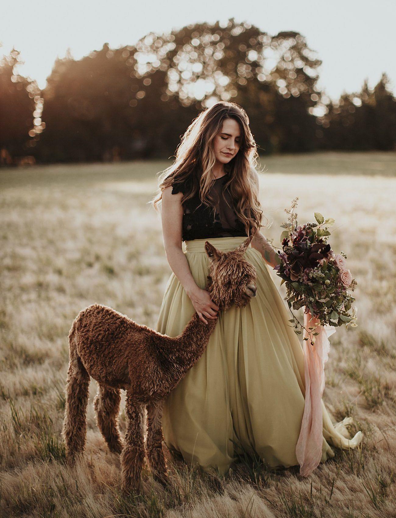 Moody Herbst Braut Shooting Auf Einer Alpaka Farm Modekreativ Com Braut Alpaka Alpaka Farm