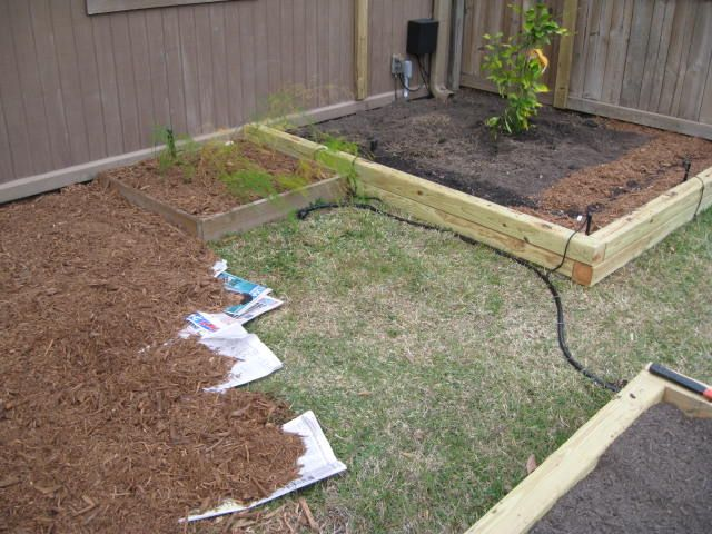 Easily kill grass or weeds by laying down newspaper then mulch this was done for our pathways for Grass killer for vegetable gardens