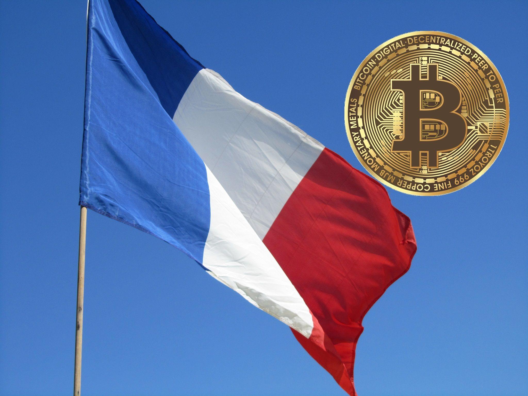 micélium btc kereskedelmi bitcoin rövid távú