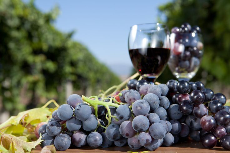 Resveratrol Benefits Side Effects And Food Sources Nutrition