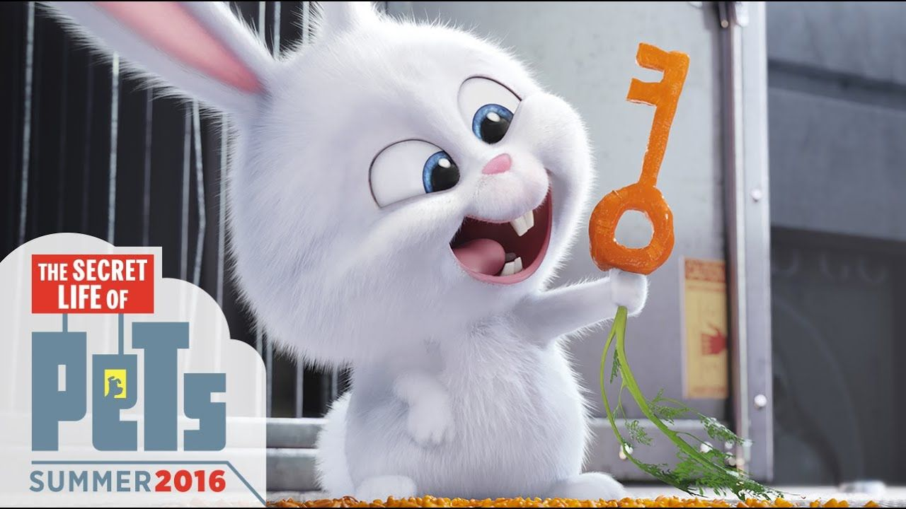 The Secret Life Of Pets Kevin Hart Is Snowball (HD
