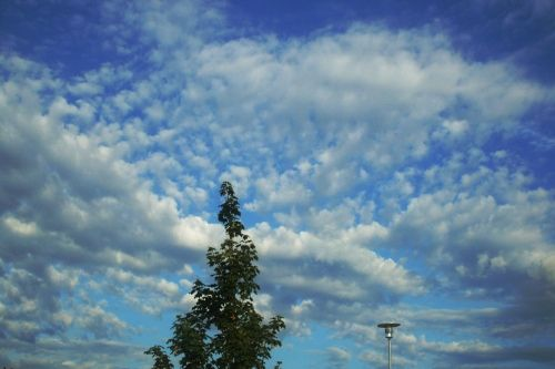 2012-04-22: cloudy afternoon