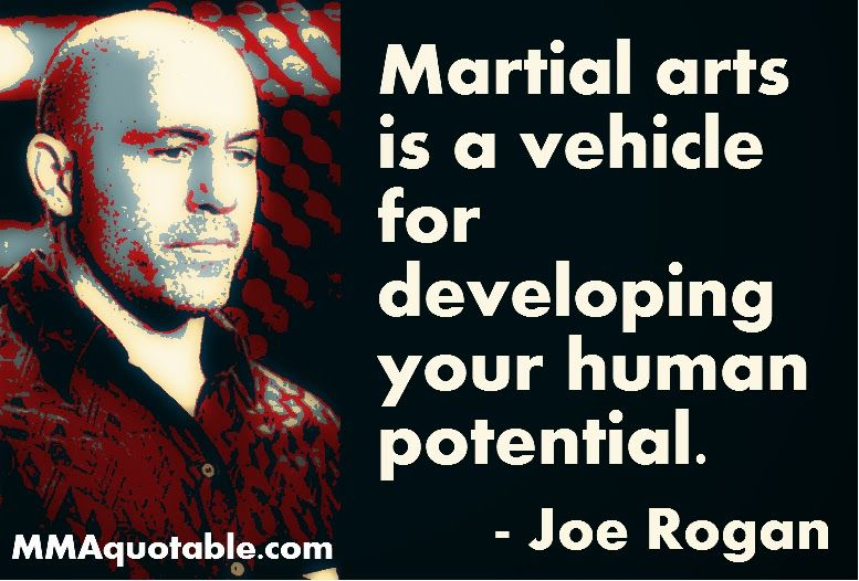Fight Fight Fight Fight Martial Arts Quotes Martial Arts Martial