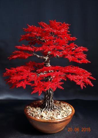 Japanese maple. | Bäume | Pinterest | Perlen, Baum und Draht