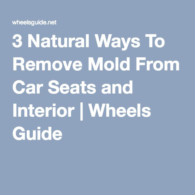 How To Get Rid Of Mould On Car Seats