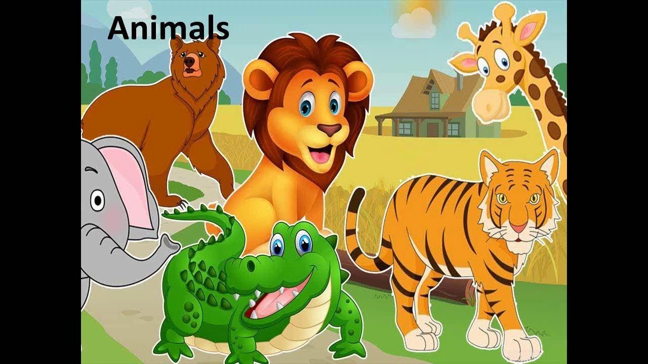 اسماء الحيوانات بالانجليزيه للاطفال بالصور Names Of Animals Zoo Animals For Kids Cartoon Zoo Animals Animals For Kids