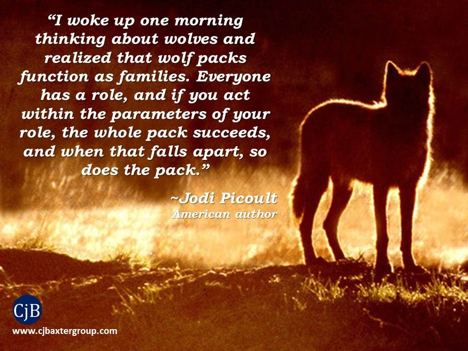 I woke up one morning thinking about wolves and realized - Animal pak motivational quotes ...