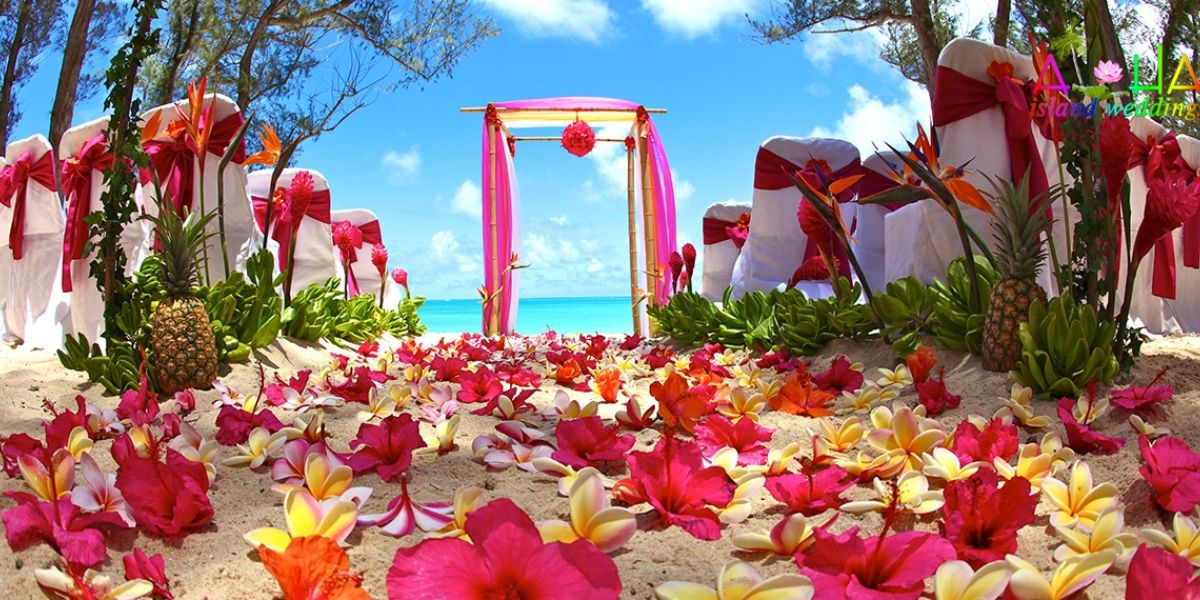 Dream wedding is leading company at hawaii they offers best wedding dream wedding is leading company at hawaii they offers best wedding packages services across the maui oahu additionally they offer maui photograp junglespirit Choice Image