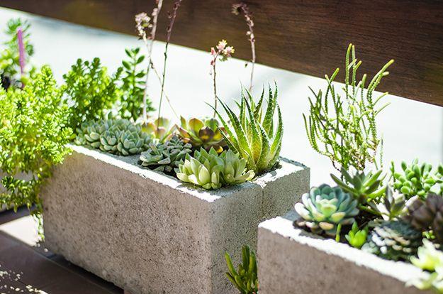 Aprende a realizar macetas con bloques de cemento for La bioguia jardines