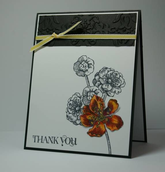 Black and White Eleanor by whippetgirl - Cards and Paper Crafts at Splitcoaststampers