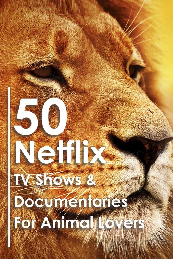 Dog documentary dog movies dog films