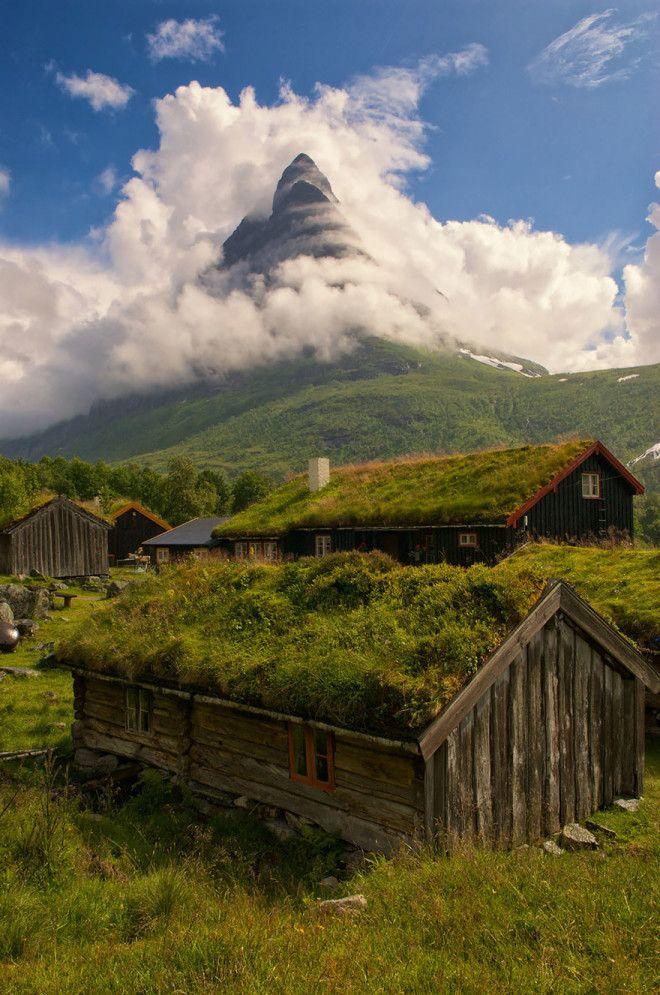 Místo zahrady zelená střecha! Obyvatelé Skandinávie si žijí jako v pohádce.