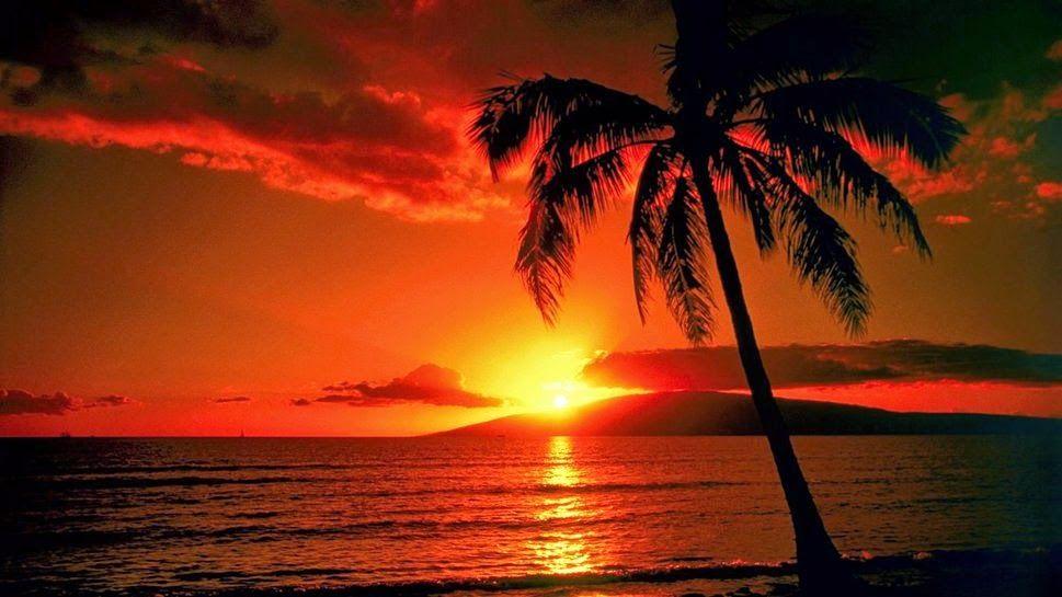 paisaje colores calidos - Buscar con Google | Color | Pinterest ...