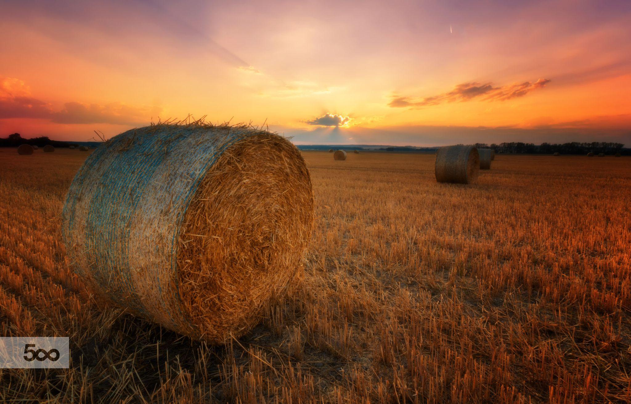 Good bye, summer by Petr Kubát on 500px
