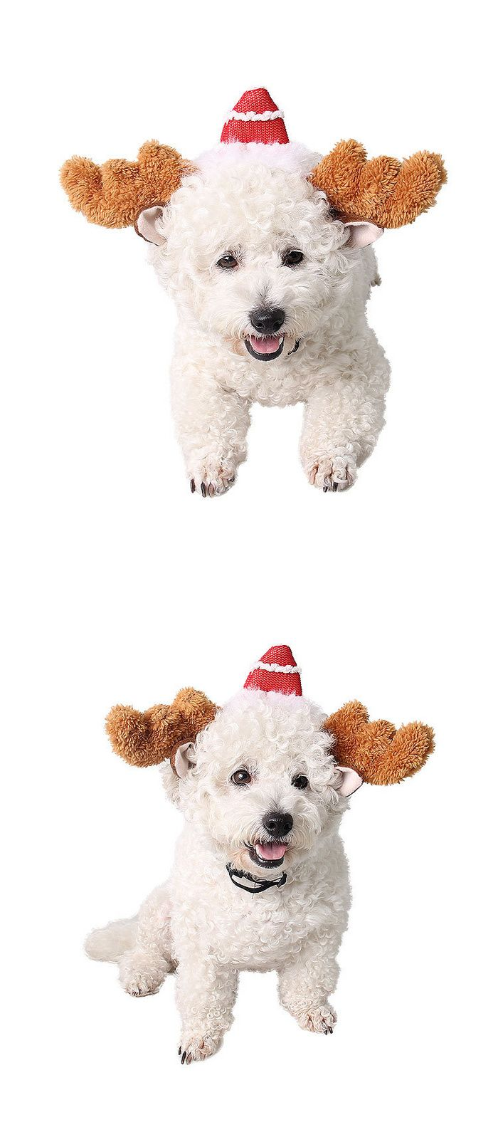Christmas Pet Products Factory Children Can Wear Christmas