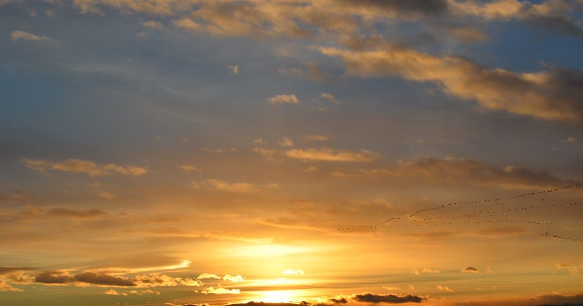 Gambar Awan Sunrise Gambar Pemandangan Laut Alam Horison Matahari Terbit Matahari Download Langit Merah Di Pagi Hari Langit Mataha Di 2020 Gambar Awan Awan Gambar