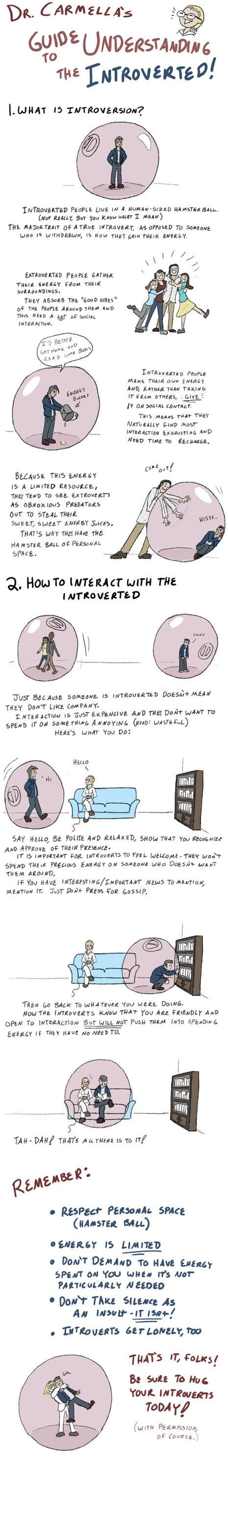 Dr. Carmella's Guide To Understanding The Introverted (I