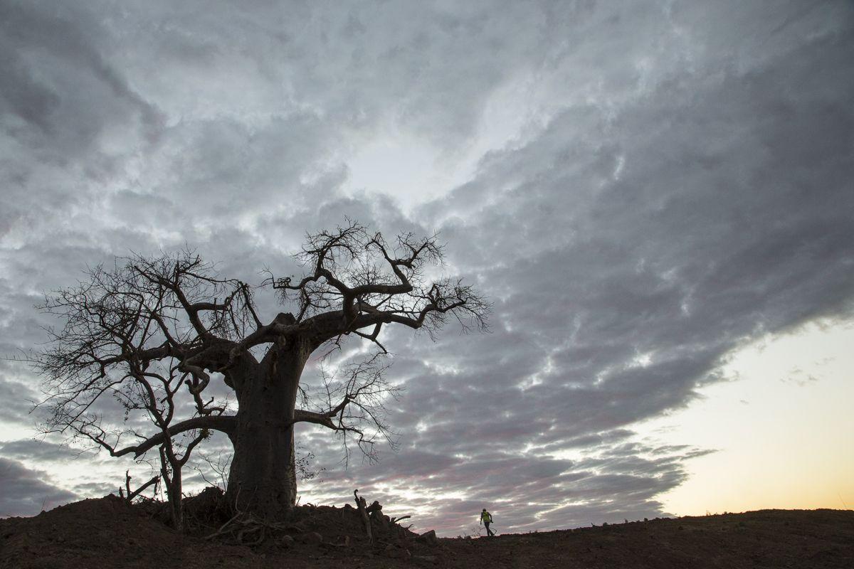 Tete, Moçambique. #africa #mozambique #travel #photo #marcelocoelho #reallife #lifestyle #natureza #cores @marcelocoelhofotografia www.marcelocoelho.com