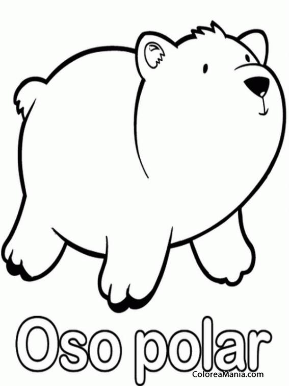 Imagenes De Un Oso Polar Para Colorear Busqueda De Google Oso Polar Dibujo Oso Polar Animales Polares