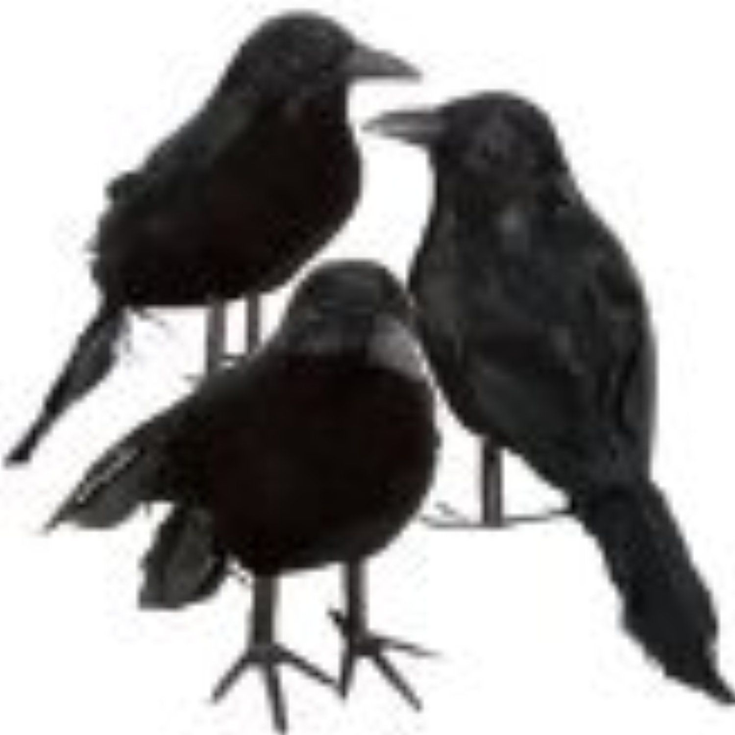 Halloween Black Feathered Crows Ravens Props Decor Halloween Decorations Birds Set Of 6 See Th Spooky Halloween Costumes Halloween Shopping Halloween Mantel