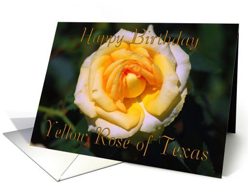 Happy birthday yellow rose of texas card httpwww happy birthday yellow rose of texas card httpgreetingcarduniverse combirthdaygeneral birthdayhappy birthday yellow rose of 873440gcu42967840600 m4hsunfo