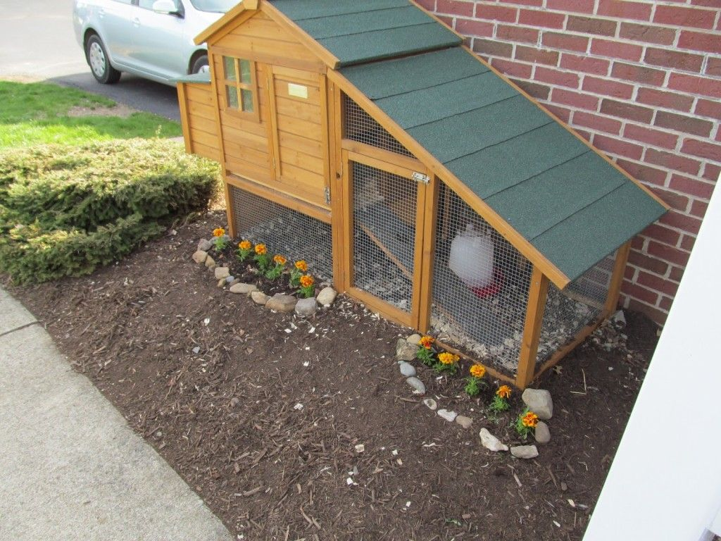 movable chicken coop plans inspiring free plans for building