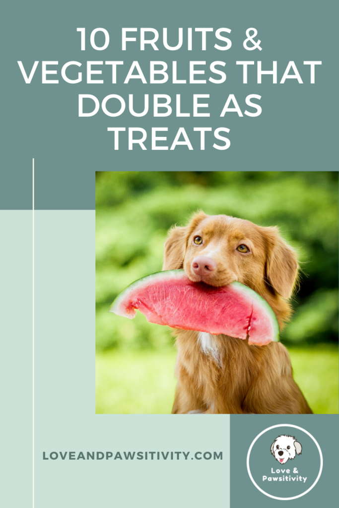 10 Fruits and Vegetables that Double as Dog Treats in 2020