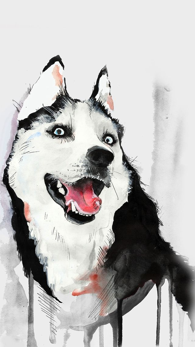 Husky Dog Watercolor Illustration Iphone Wallpapers Watercolor
