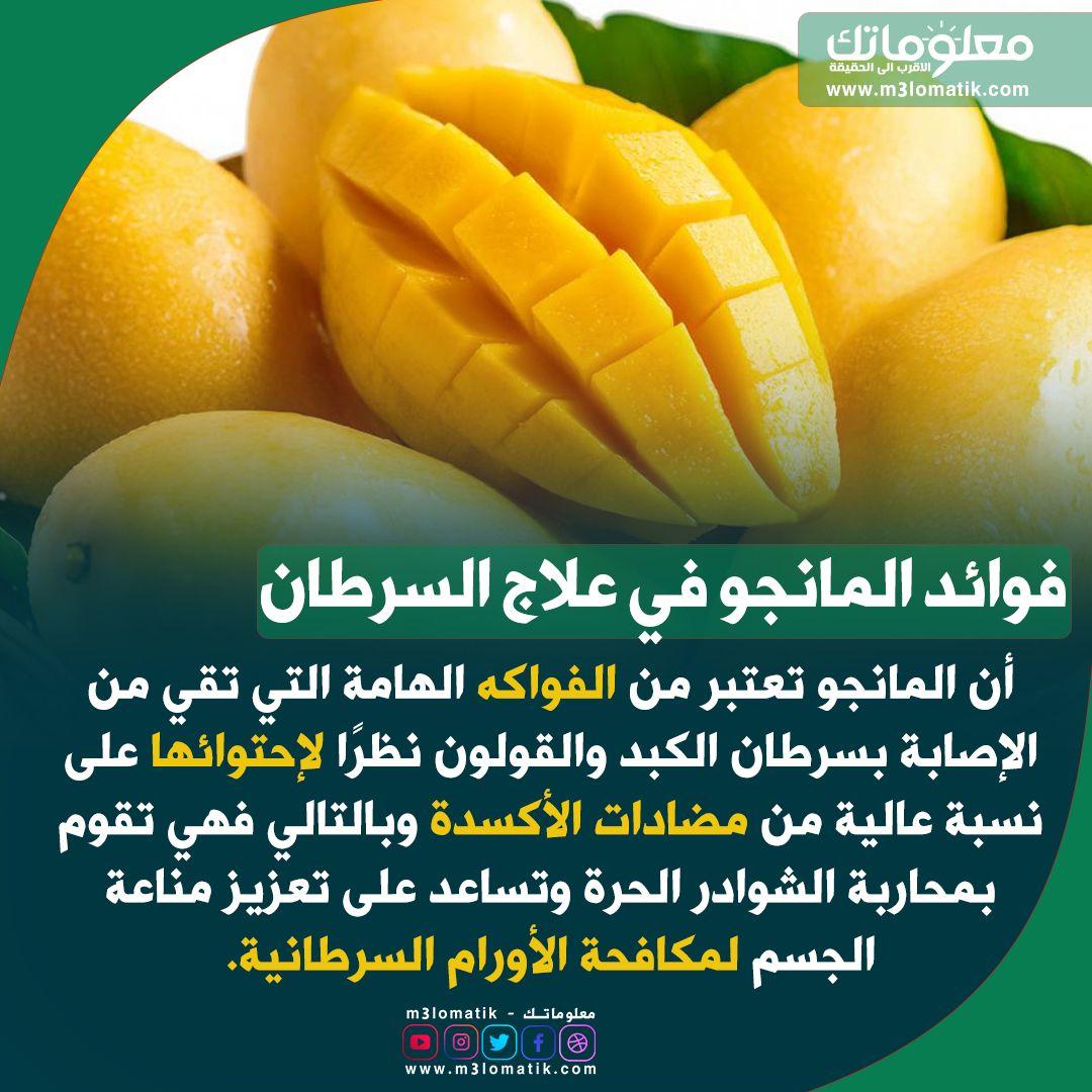فوائد المانجو في علاج السرطان Mango Fruit Food