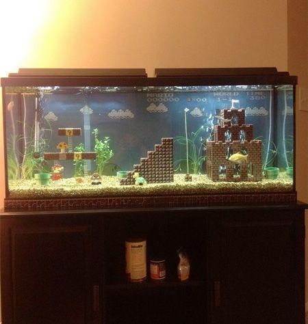 Super Mario Aquarium Omg I Should Do That For My Turtles Aquarium Decorations Lego Super Mario Aquarium