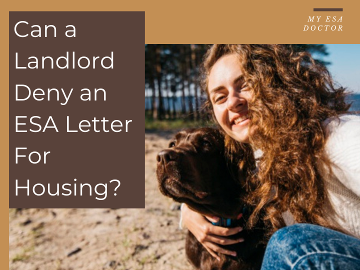 Can A Land Deny An Esa Letter For Housing Emotional Support Animal Animal Doctor Emotional Support