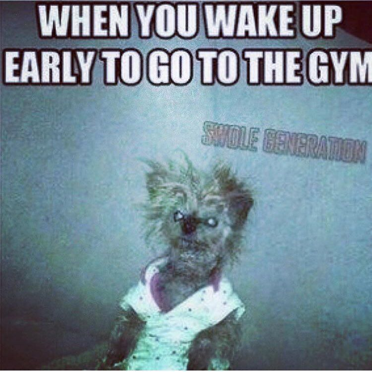 Me And Charles Fleck This Morning Truth Sosleepy Tooearlyforthis Goodmorning Doitanyway Gym Memes Funny Gym Memes Workout Memes