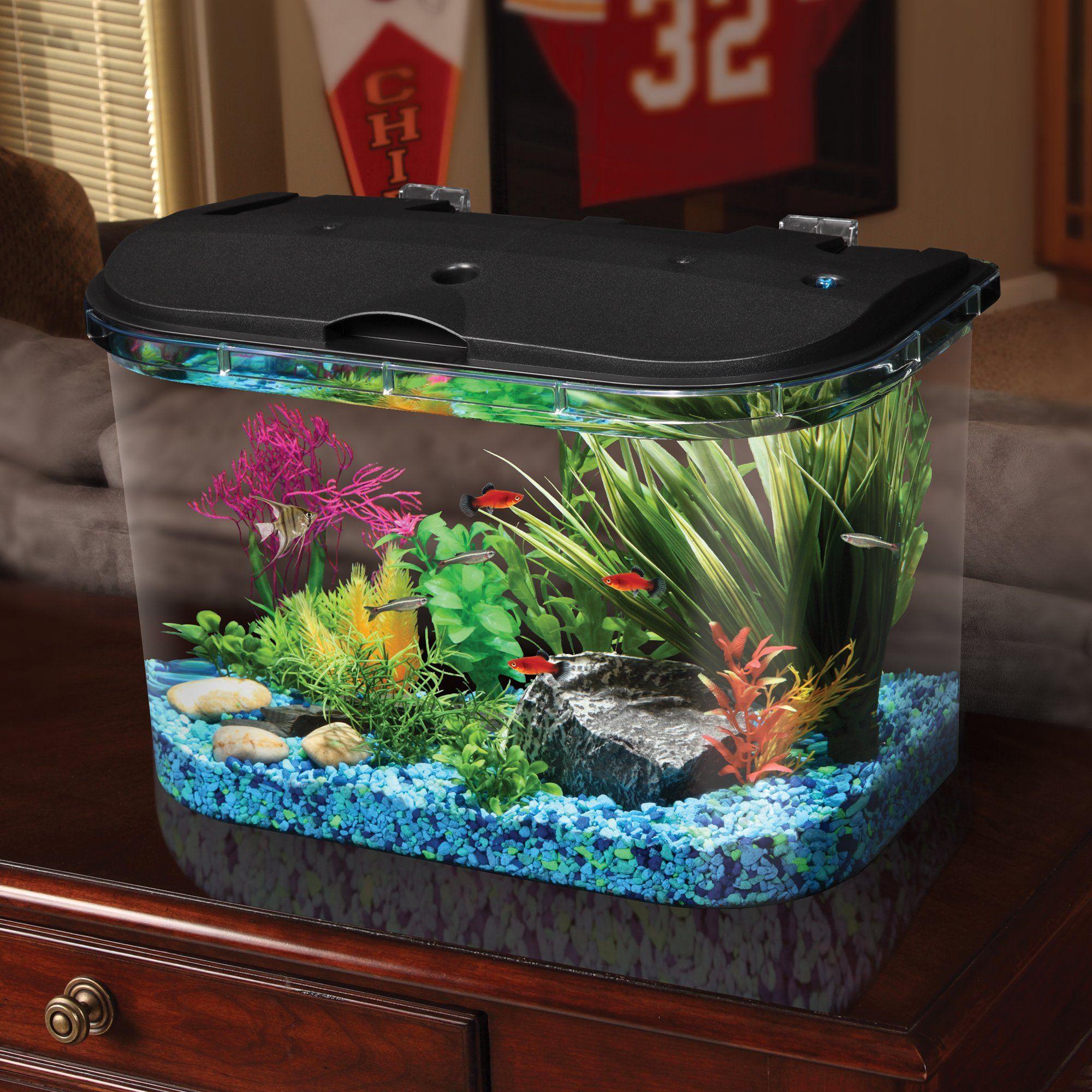 Imagitarium Freshwater Aquarium 5 2 Gallons Petco Store Big
