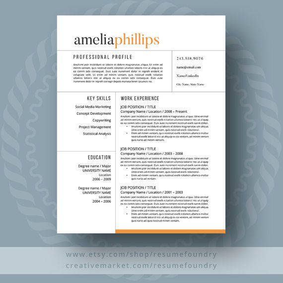 Modern Resume Template  The Amelia  Modern Resume Template