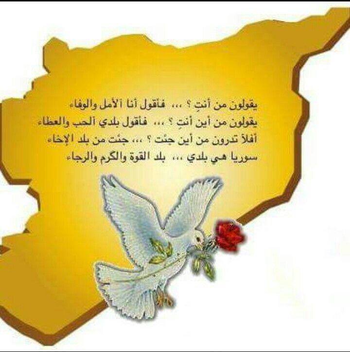 Syria In My Heart سوريا يا حبيبتي Decorative Plates Tableware Decor