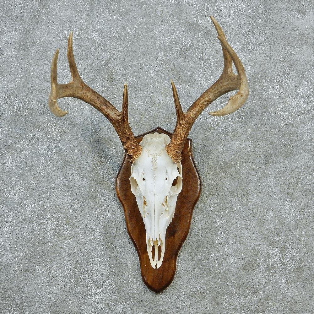 Faux Deer Head Decor Chic
