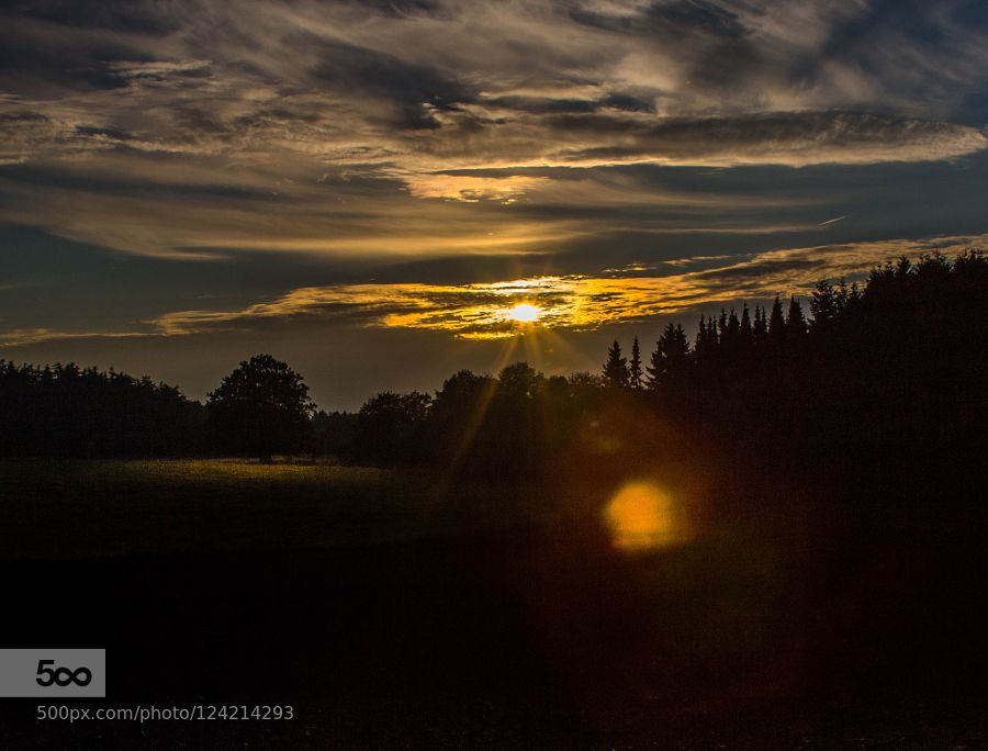 Light by neupeters #nature