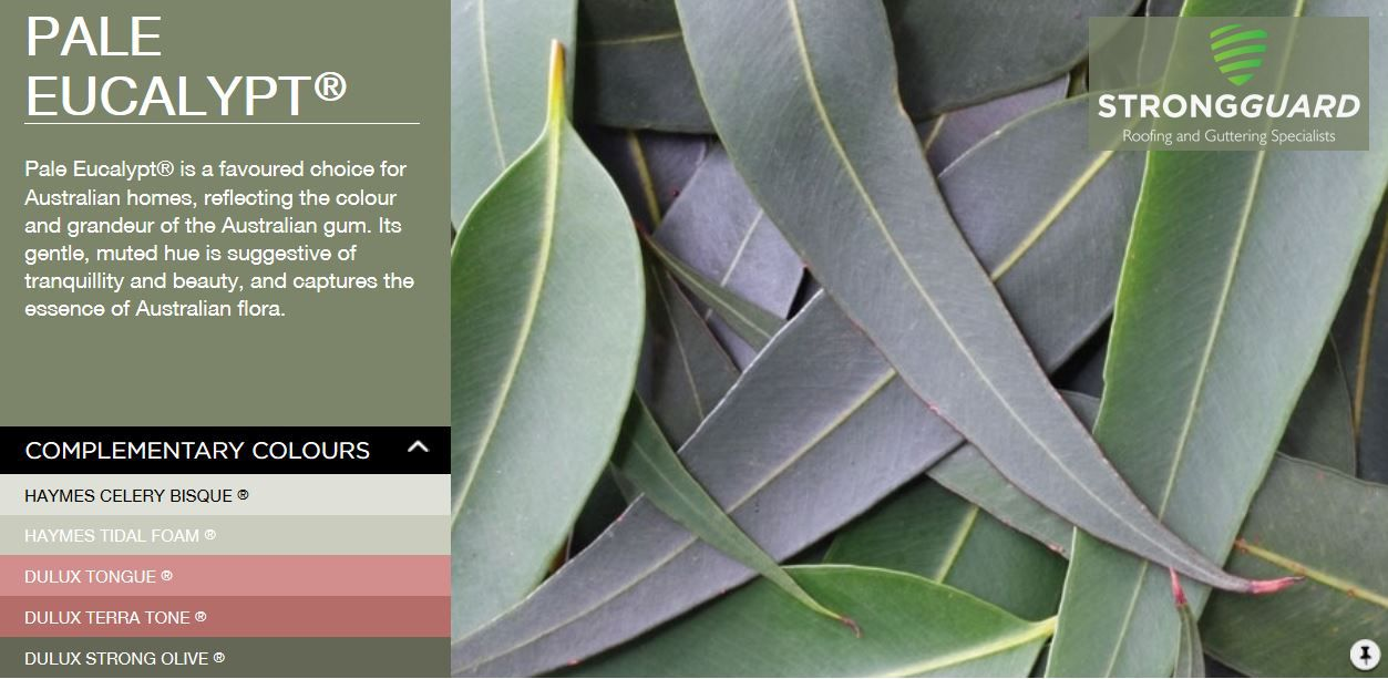 Bluescope steel colorbond pale eucalypt - Colorbond exterior colour schemes ...