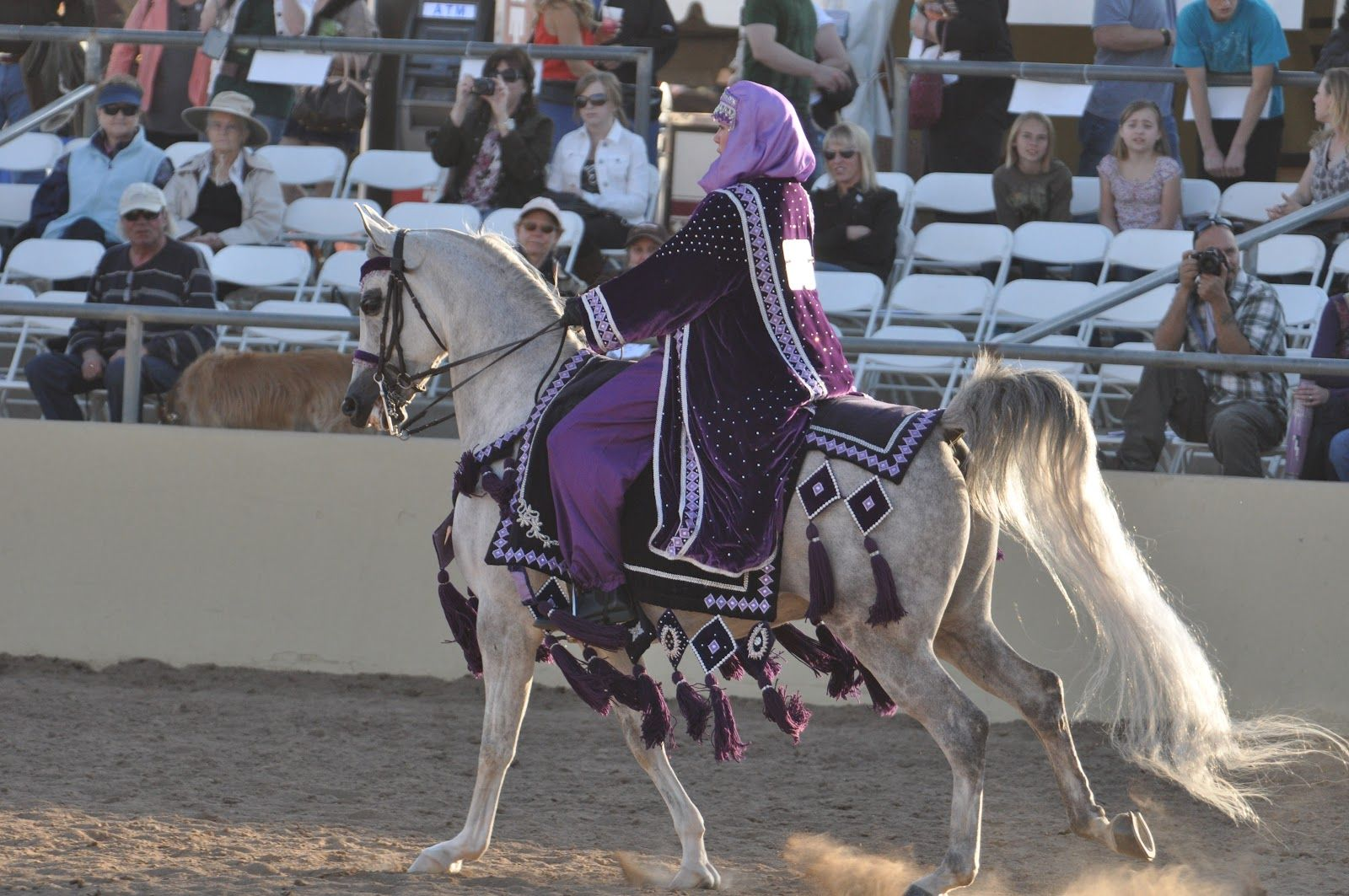 pictures of mounted native costume | Arabian Horse Costume