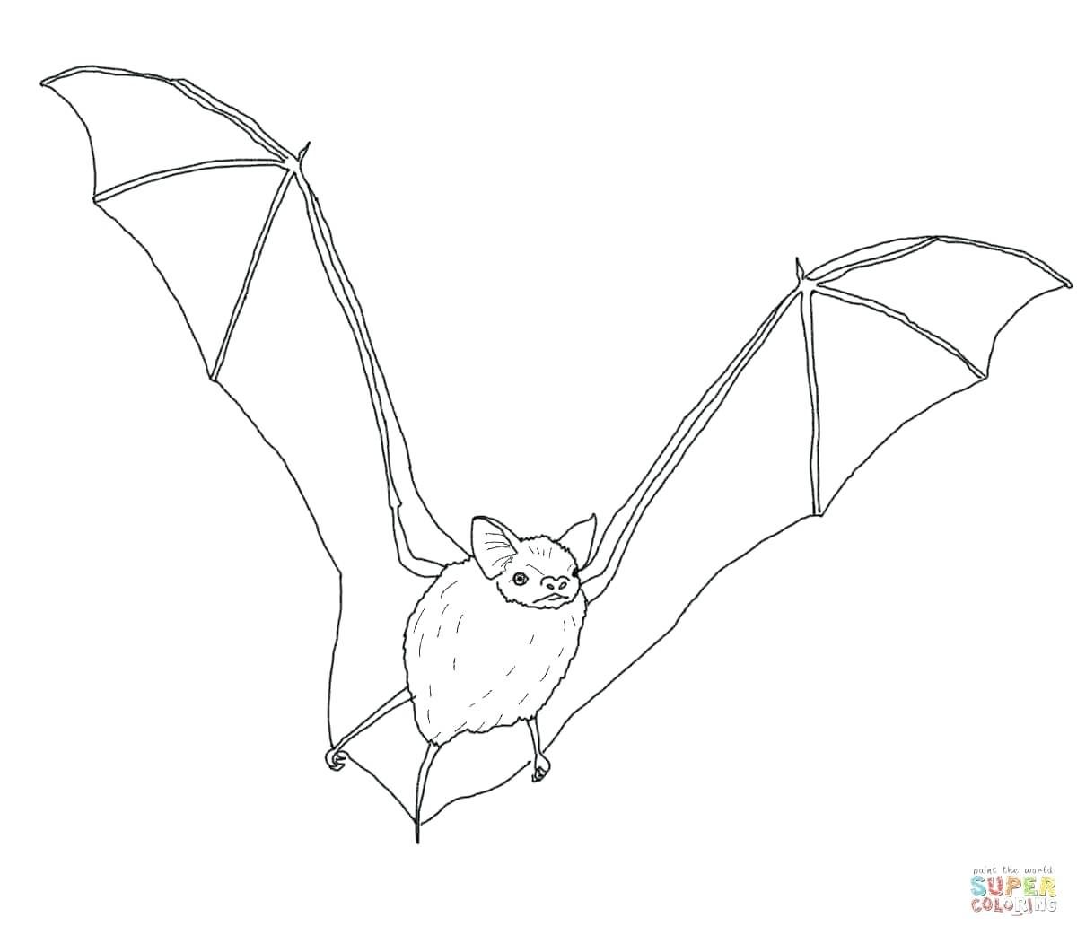 Bat Tattoo Designs Google Search With Images Bats Tattoo Design